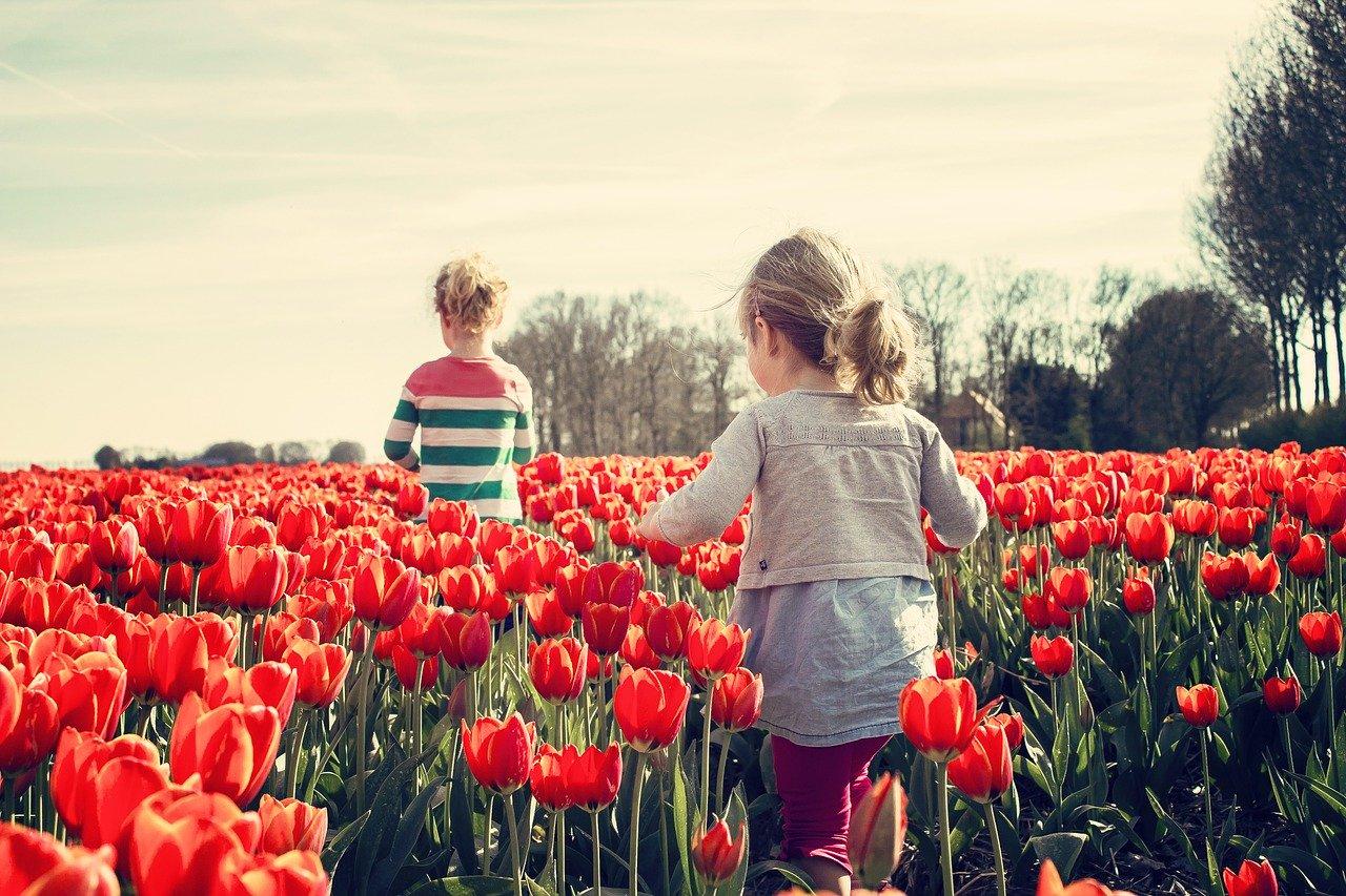 アーユルヴェーダ的「春」の過ごし方【季節にあわせた生活で免疫力アップ】